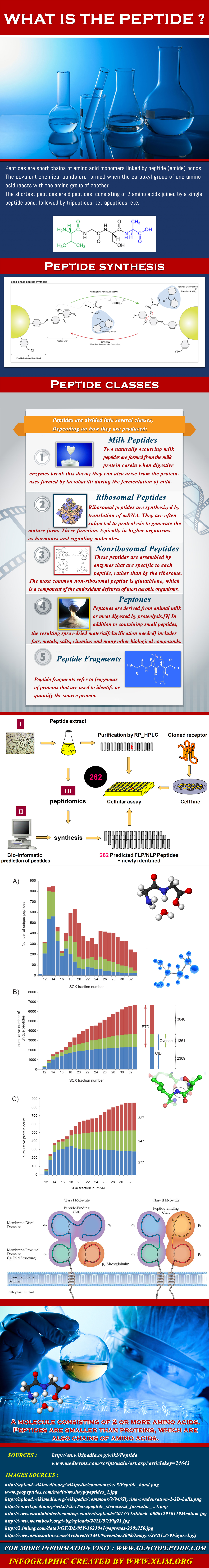 What is peptide_GENCO PEPTIDES